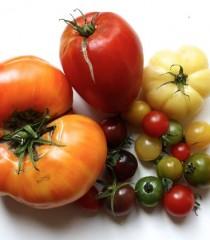 Les légumes de Thierry Riant