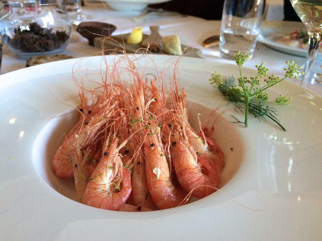 crevettes bouquet olivier roellinger coquillage